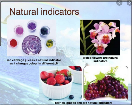EXAMPLE OF DIFFERENT NATURAL INDICATORS