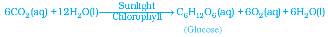 photosynthesis reaction showing physical parameters above and below the arrow